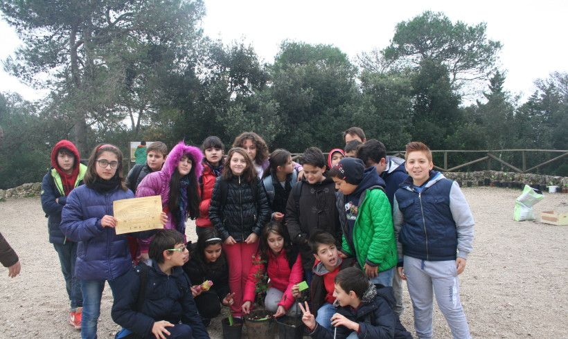 Novembre 2014: Festa dell'albero