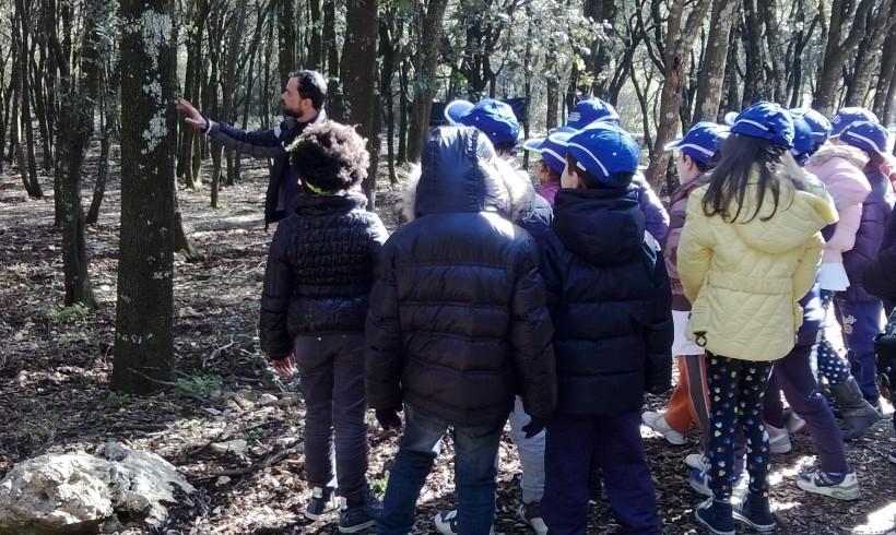 Giornata internazionale delle foreste – Le foto