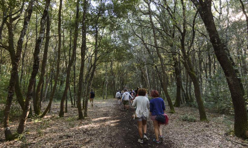 Pasquetta 2017 nel Bosco delle Pianelle