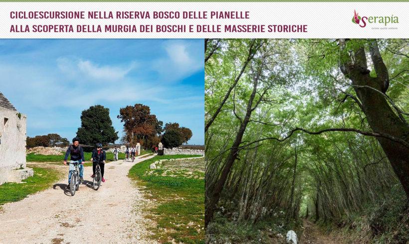 In bici tra boschi e masserie