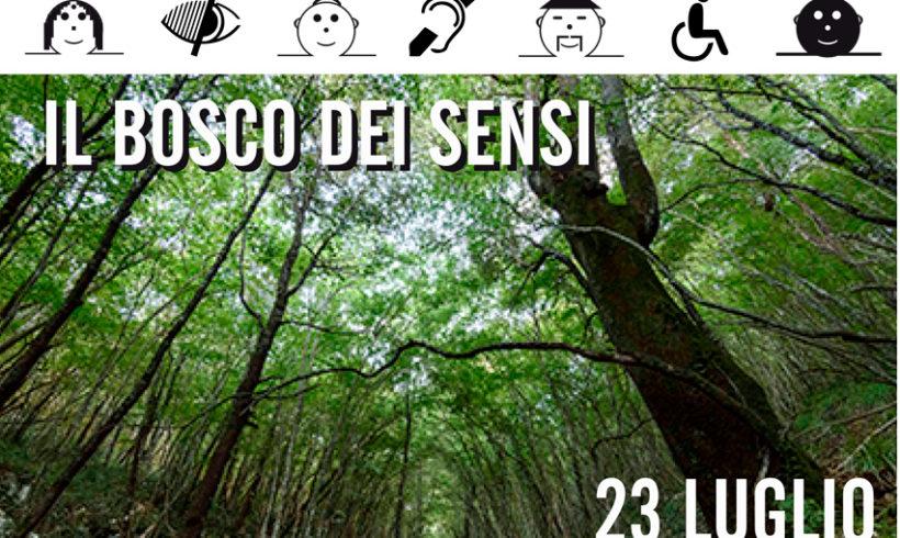 Il bosco dei sensi