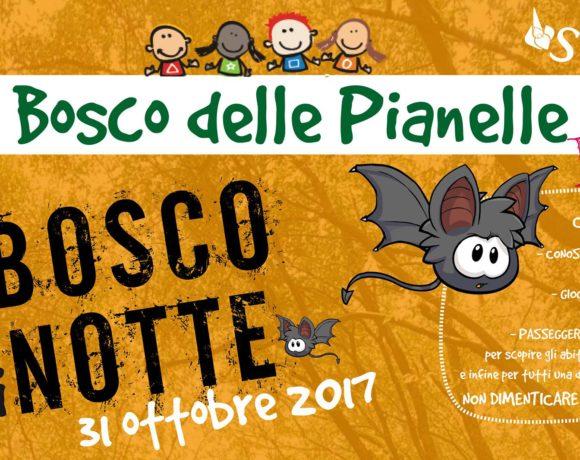 Pianelle for Kids: il bosco di notte