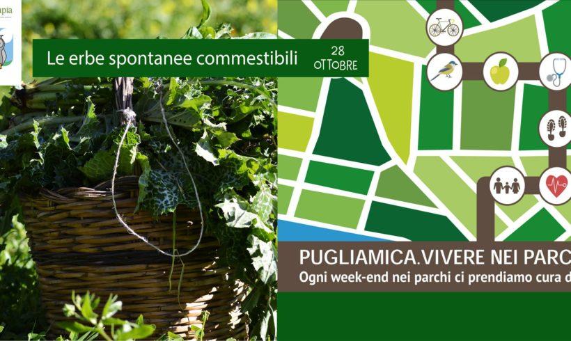 Vivere nei Parchi: le erbe spontanee commestibili