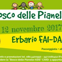 Pianelle for Kids: erbario FAI-DA-TE