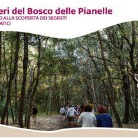 Le domeniche mattine al fresco del Bosco delle Pianelle