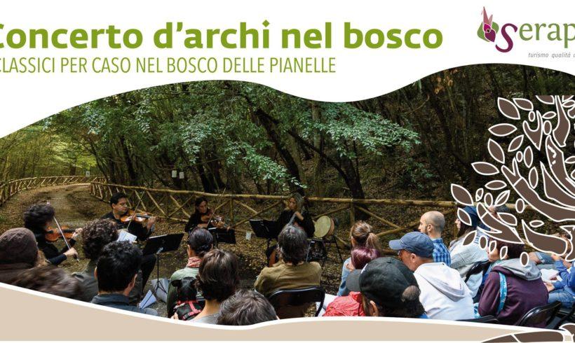 Concerto d'archi nel bosco – 3 novembre 2019