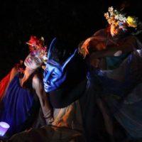 Festival itinerante di teatro-natura al Bosco delle Pianelle