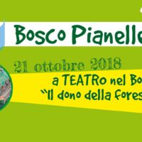Pianelle for Kids: incorniciamo l'autunno