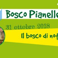Pianelle for Kids: il bosco di notte