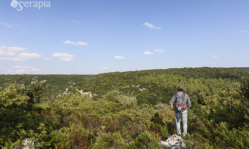 18 km di avventurosa escursione nel Bosco delle Pianelle – 22 Marzo 2020